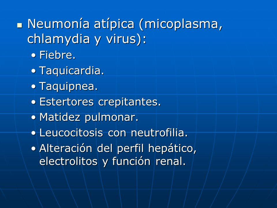 Rx tórax: Rx tórax: Prueba fundamental y obligada para establecer diagnostico de neumonía.Prueba fundamental y obligada para establecer diagnostico de neumonía.