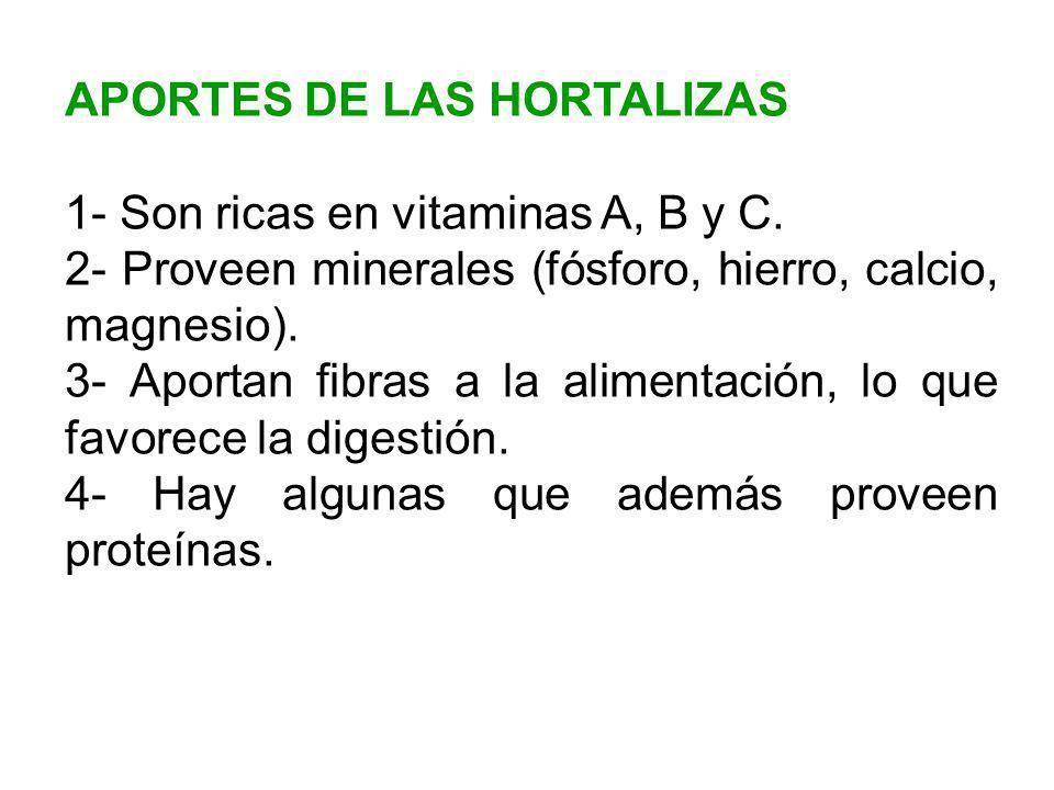 APORTES DE LAS HORTALIZAS 1- Son ricas en vitaminas A, B y C. 2- Proveen minerales (fósforo, hierro, calcio, magnesio). 3- Aportan fibras a la aliment