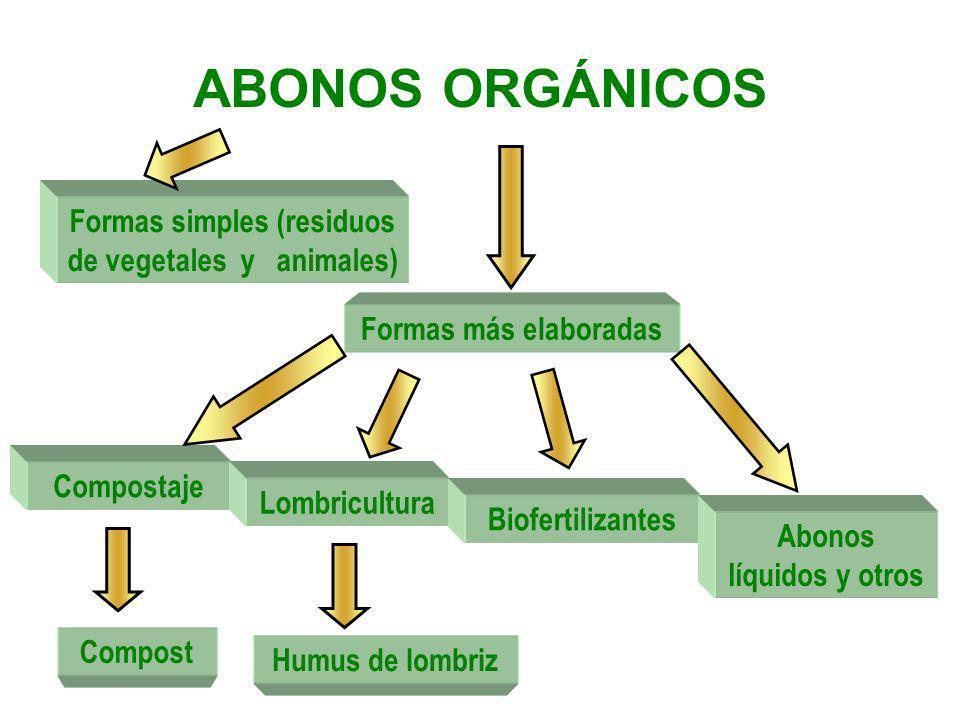 ABONOS ORGÁNICOS Formas simples (residuos de vegetales y animales) Formas más elaboradas Compostaje Compost Lombricultura Humus de lombriz Biofertiliz