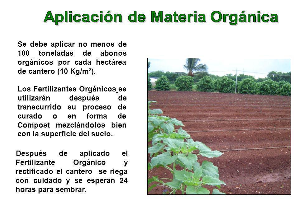 Después de aplicado el Fertilizante Orgánico y rectificado el cantero se riega con cuidado y se esperan 24 horas para sembrar. Se debe aplicar no meno