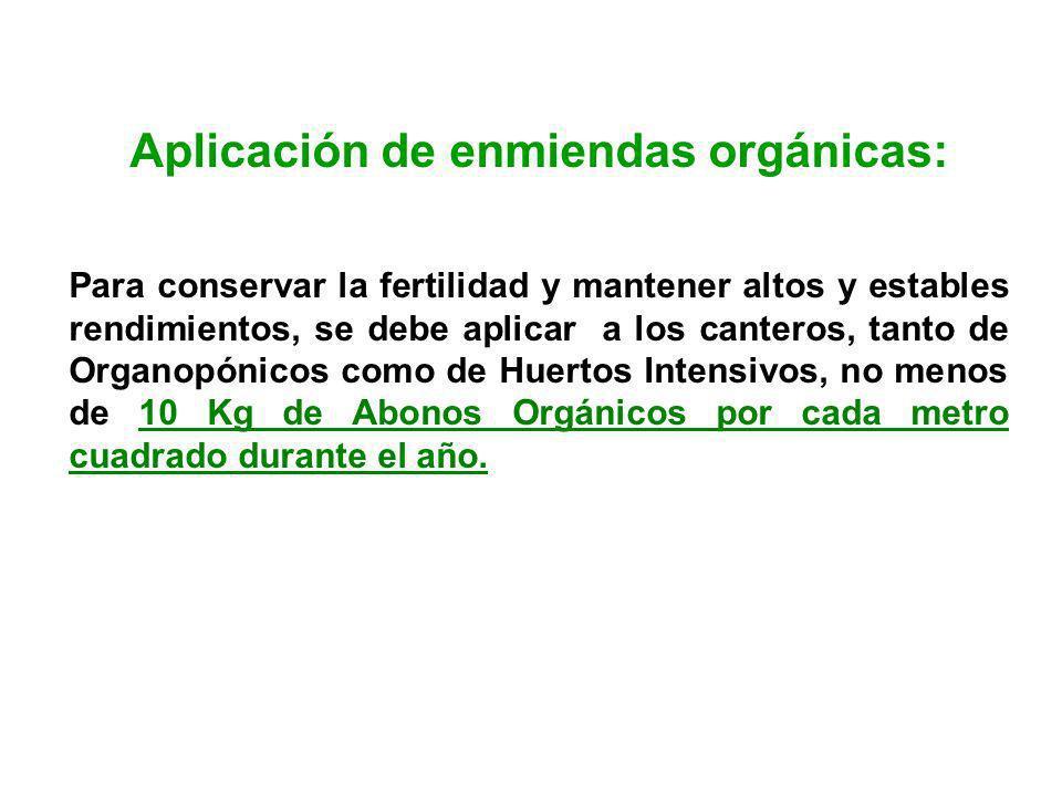 Aplicación de enmiendas orgánicas: Para conservar la fertilidad y mantener altos y estables rendimientos, se debe aplicar a los canteros, tanto de Org