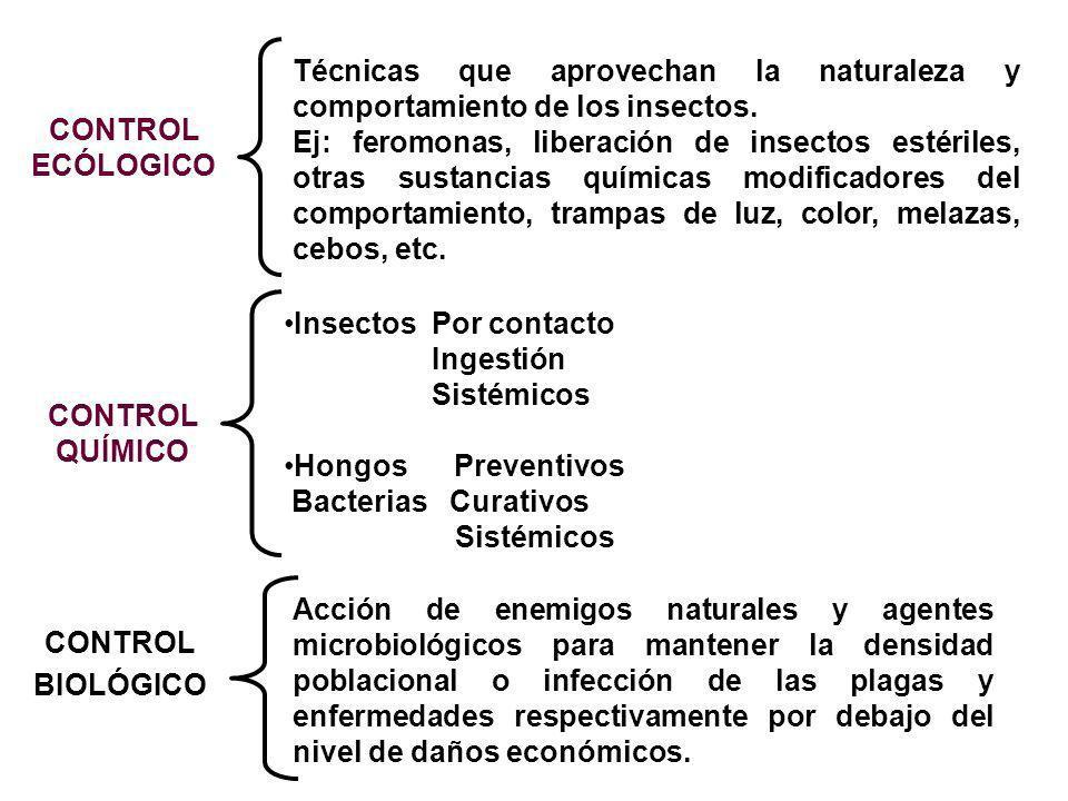 CONTROL ECÓLOGICO CONTROL QUÍMICO Técnicas que aprovechan la naturaleza y comportamiento de los insectos. Ej: feromonas, liberación de insectos estéri