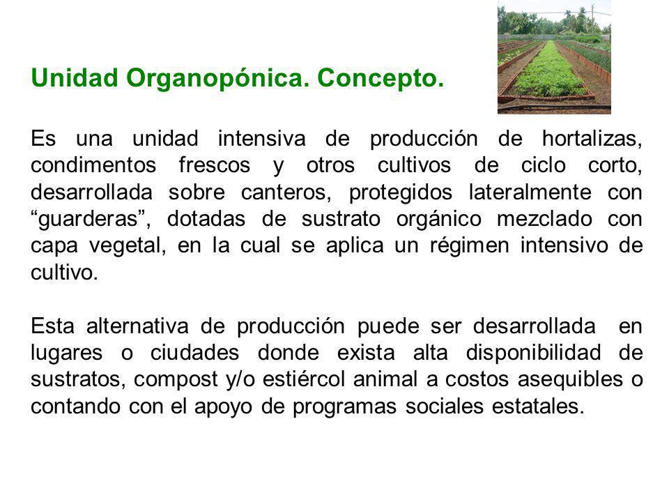 Unidad Organopónica. Concepto. Es una unidad intensiva de producción de hortalizas, condimentos frescos y otros cultivos de ciclo corto, desarrollada