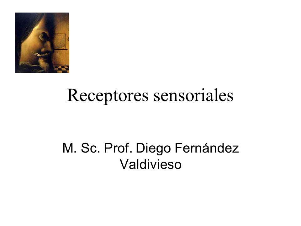Receptores sensoriales M. Sc. Prof. Diego Fernández Valdivieso