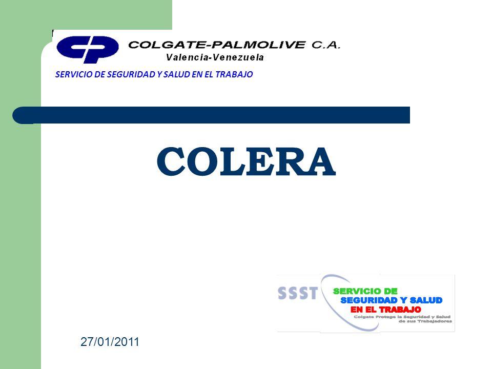 COLERA SERVICIO DE SEGURIDAD Y SALUD EN EL TRABAJO 27/01/2011