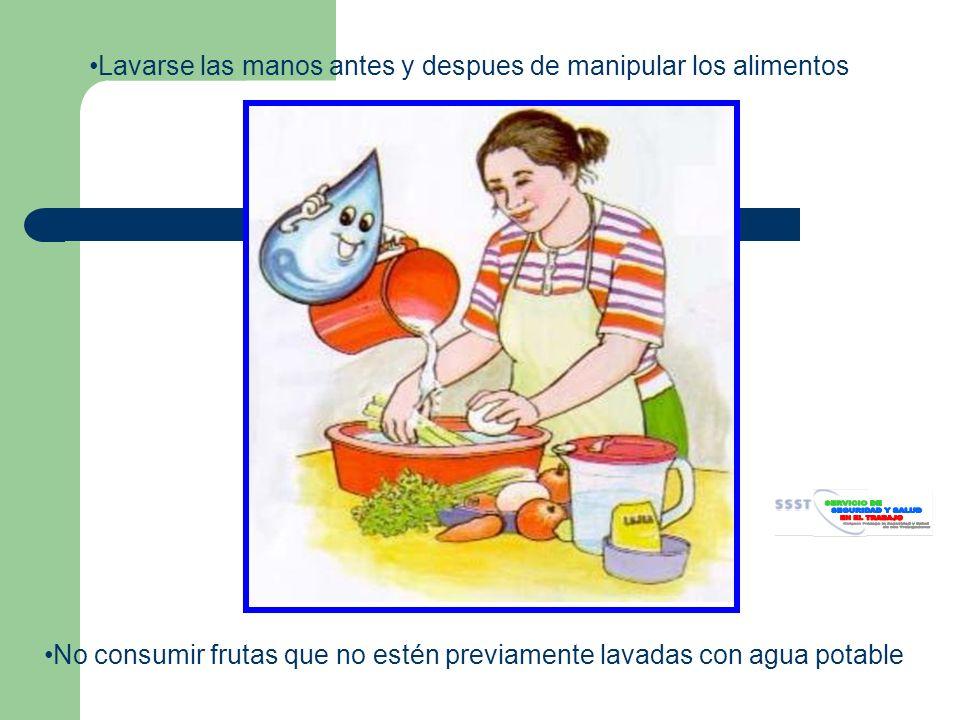 Lavarse las manos antes y despues de manipular los alimentos No consumir frutas que no estén previamente lavadas con agua potable
