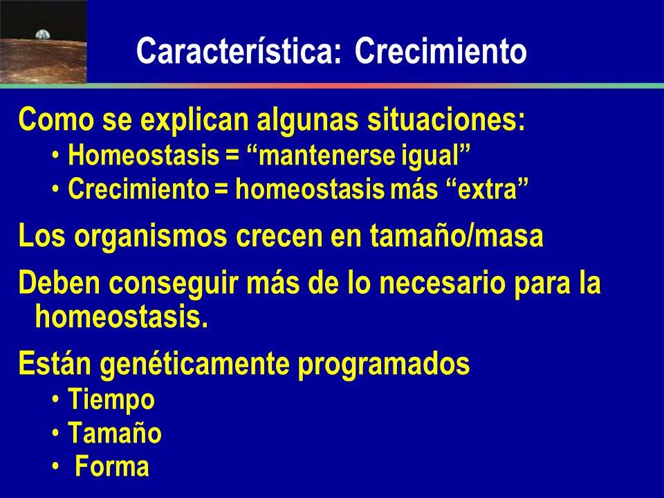 Característica: Crecimiento Como se explican algunas situaciones: Homeostasis = mantenerse igual Crecimiento = homeostasis más extra Los organismos cr