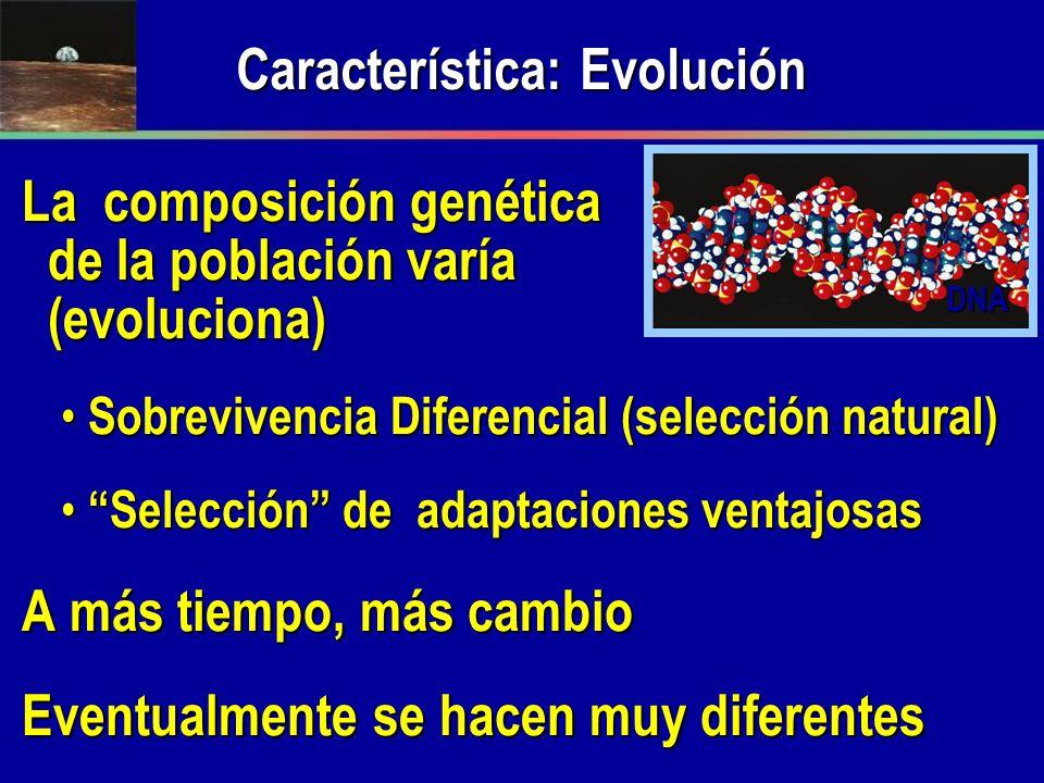 La composición genética de la población varía (evoluciona) Sobrevivencia Diferencial (selección natural) Sobrevivencia Diferencial (selección natural)