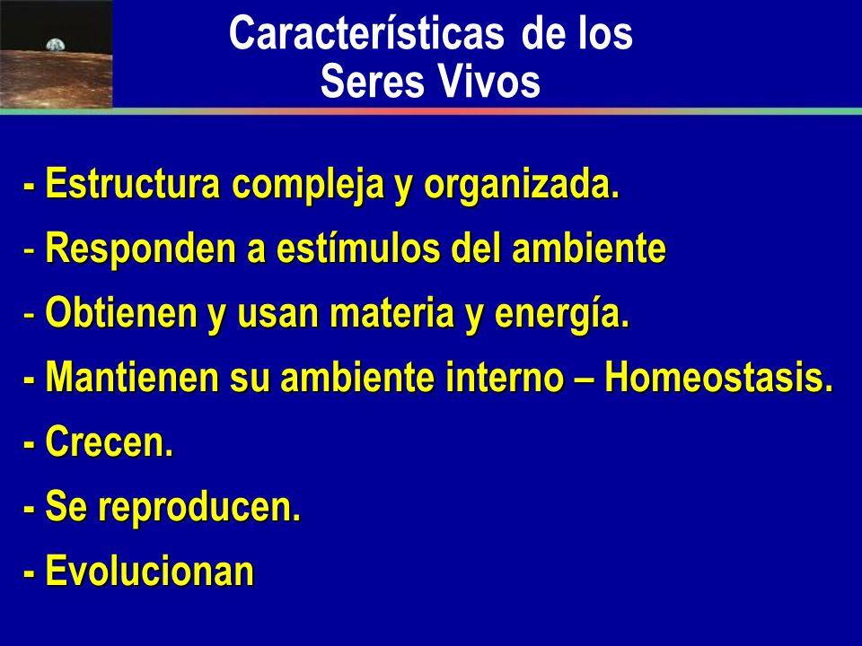 Características de los Seres Vivos - Estructura compleja y organizada. - Responden a estímulos del ambiente - Obtienen y usan materia y energía. - Man