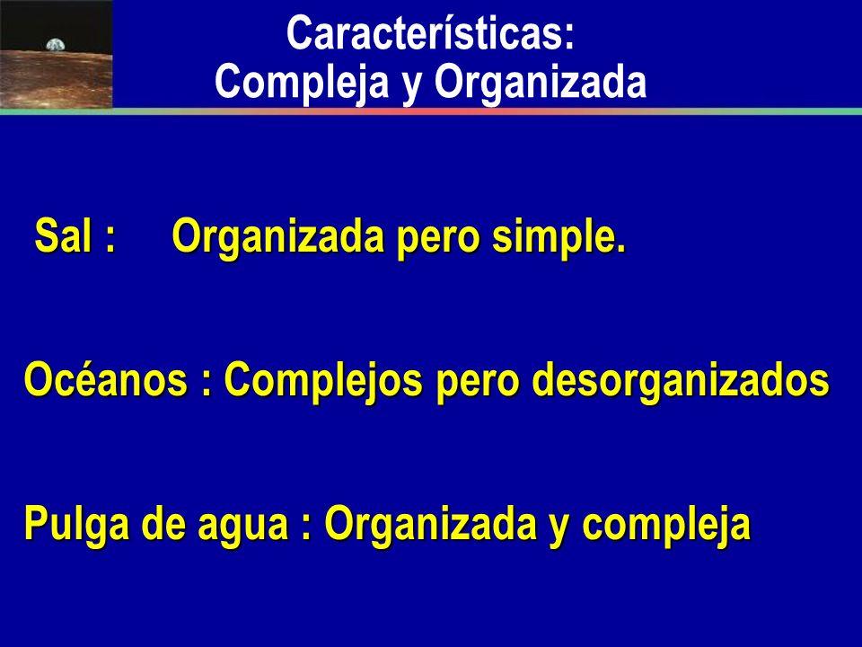 Sal : Organizada pero simple. Sal : Organizada pero simple. Océanos : Complejos pero desorganizados Pulga de agua : Organizada y compleja Característi