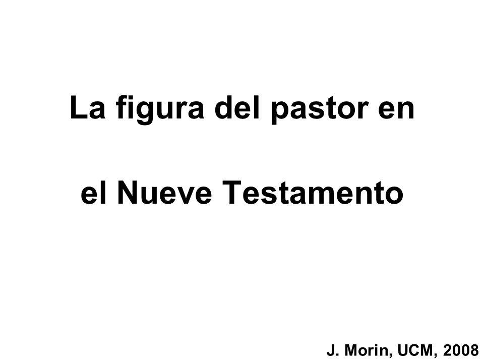 La figura del pastor en el Nueve Testamento J. Morin, UCM, 2008