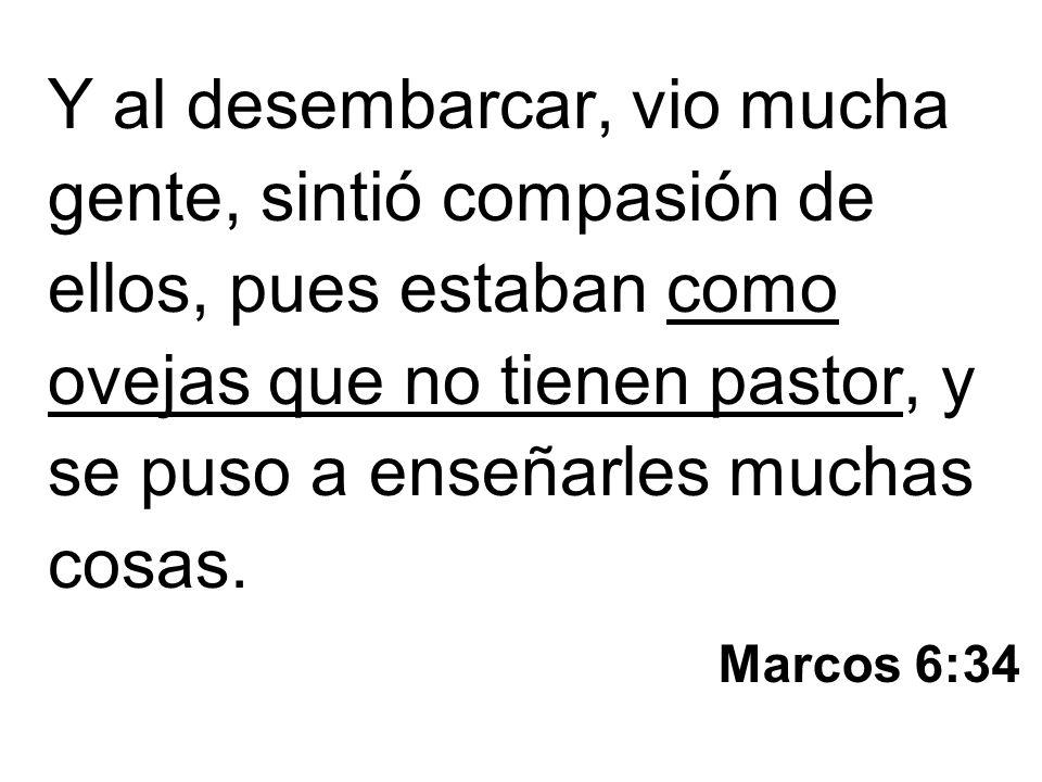 Marcos 6:34 Y al desembarcar, vio mucha gente, sintió compasión de ellos, pues estaban como ovejas que no tienen pastor, y se puso a enseñarles muchas