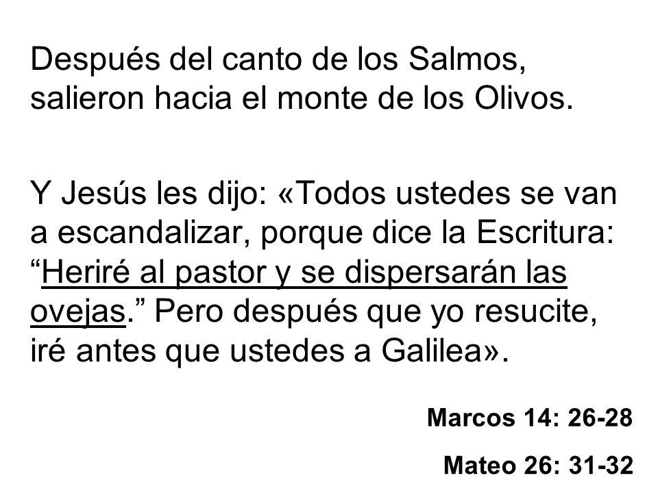 Marcos 14: 26-28 Después del canto de los Salmos, salieron hacia el monte de los Olivos. Y Jesús les dijo: «Todos ustedes se van a escandalizar, porqu
