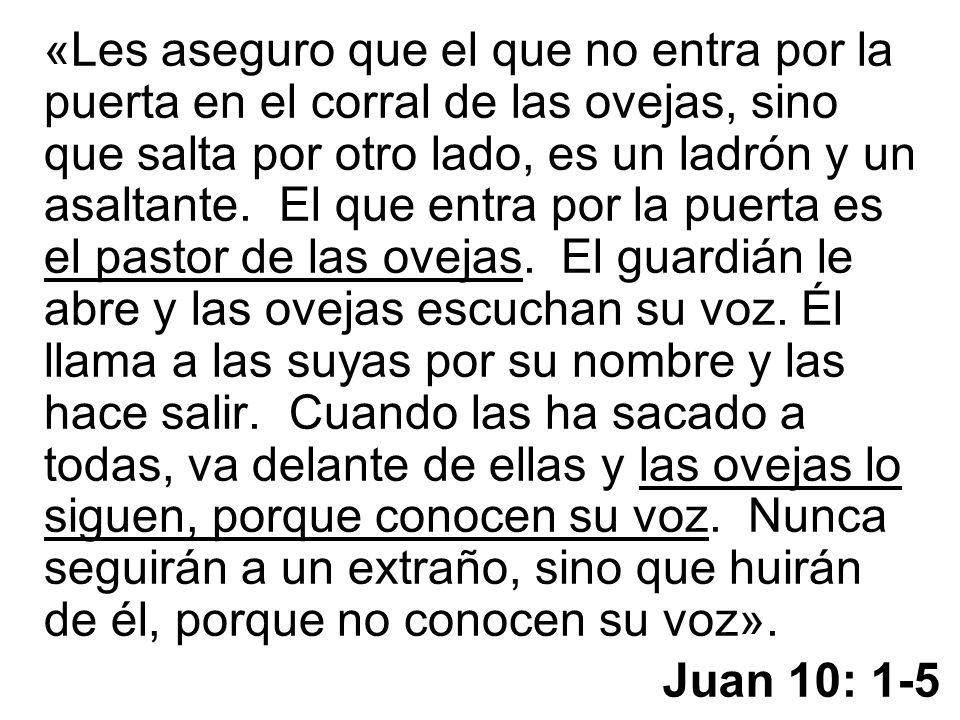 Juan 10: 1-5 «Les aseguro que el que no entra por la puerta en el corral de las ovejas, sino que salta por otro lado, es un ladrón y un asaltante. El