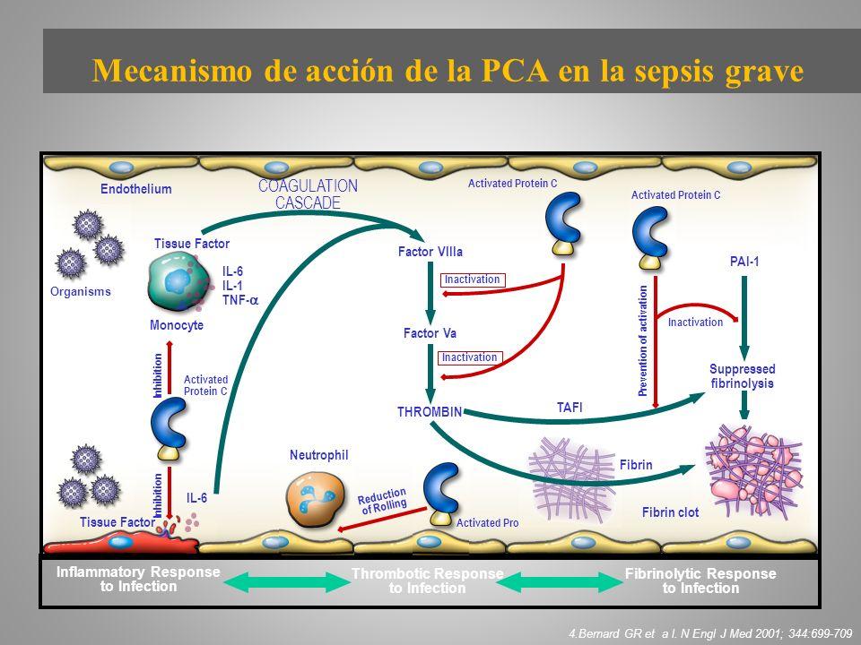 Endothelium Neutrophil Monocyte IL-6 IL-1 TNF- IL-6 Activated Protein C Inactivation Prevention of activation Activated Protein C Inflammatory Respons