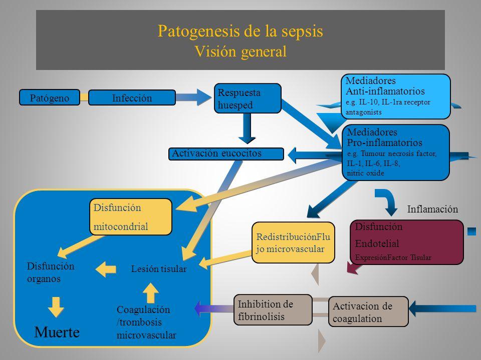 Patogenesis de la sepsis Visión general Lesión tisular Coagulación /trombosis microvascular Disfunción organos Muerte Disfunción mitocondrial Activaci