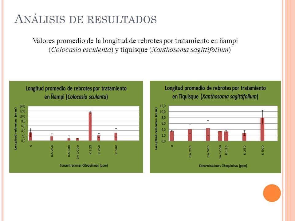 A NÁLISIS DE RESULTADOS Valores promedio de la longitud de rebrotes por tratamiento en ñampi (Colocasia esculenta) y tiquisque (Xanthosoma sagittifoli