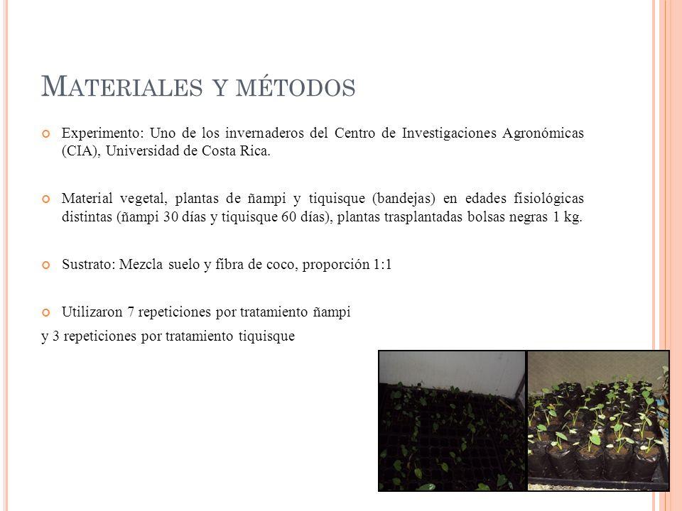 M ATERIALES Y MÉTODOS Experimento: Uno de los invernaderos del Centro de Investigaciones Agronómicas (CIA), Universidad de Costa Rica. Material vegeta