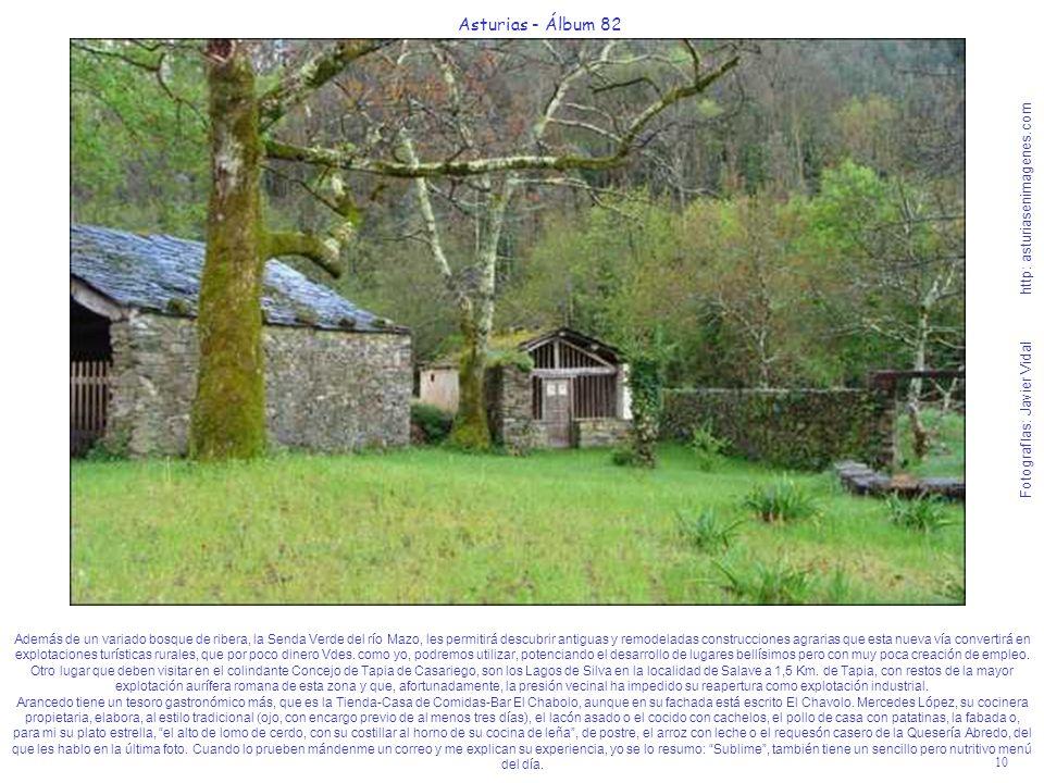 10 Asturias - Álbum 82 Fotografías: Javier Vidal http: asturiasenimagenes.com Además de un variado bosque de ribera, la Senda Verde del río Mazo, les