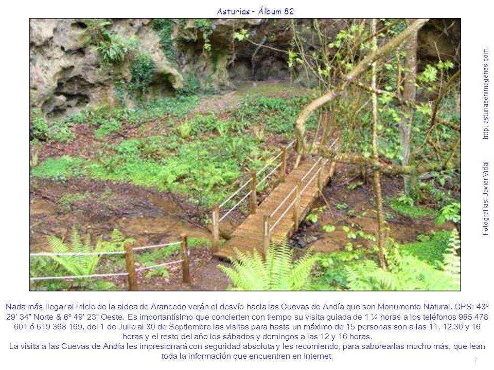 7 Asturias - Álbum 82 Fotografías: Javier Vidal http: asturiasenimagenes.com Nada más llegar al inicio de la aldea de Arancedo verán el desvío hacia l
