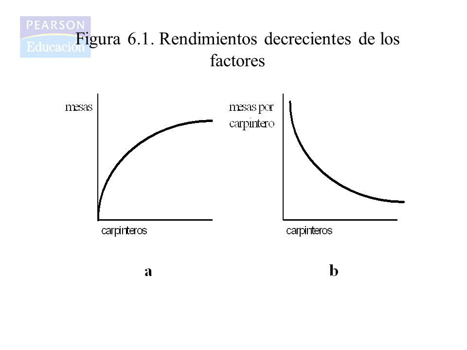 Figura 6.1. Rendimientos decrecientes de los factores