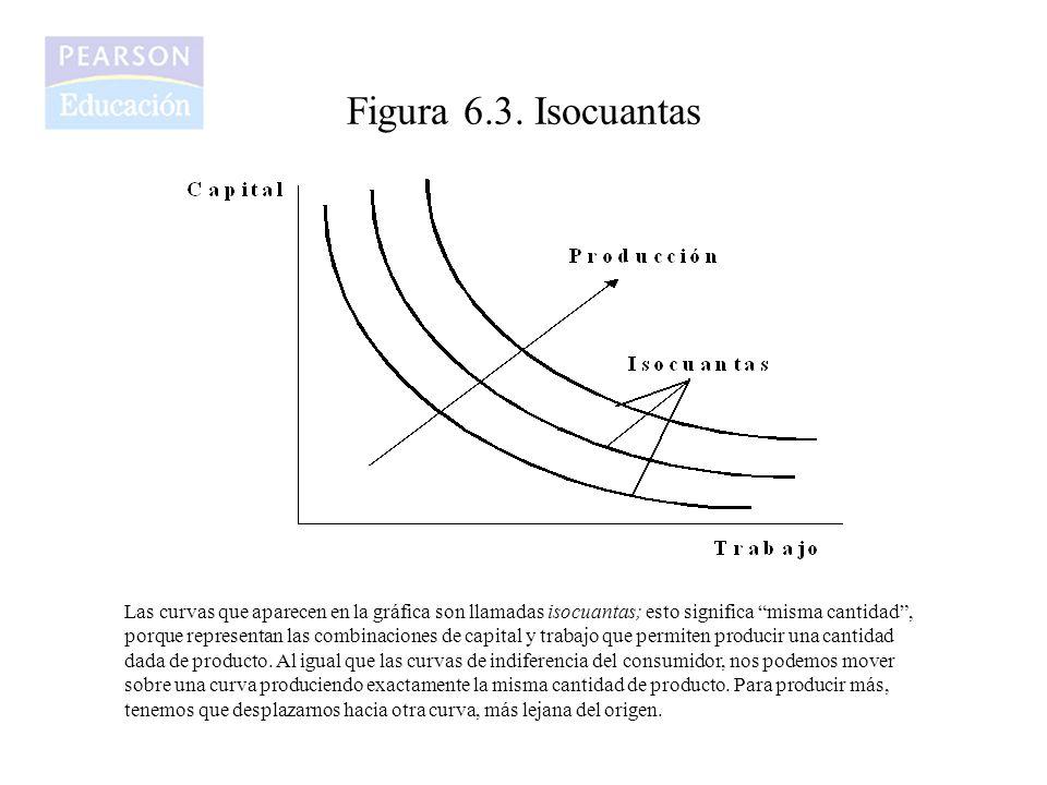 Figura 6.3. Isocuantas Las curvas que aparecen en la gráfica son llamadas isocuantas; esto significa misma cantidad, porque representan las combinacio