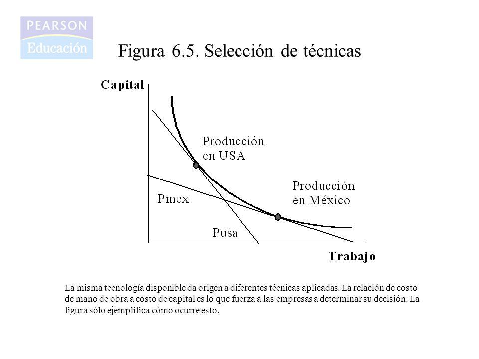 Figura 6.5. Selección de técnicas La misma tecnología disponible da origen a diferentes técnicas aplicadas. La relación de costo de mano de obra a cos