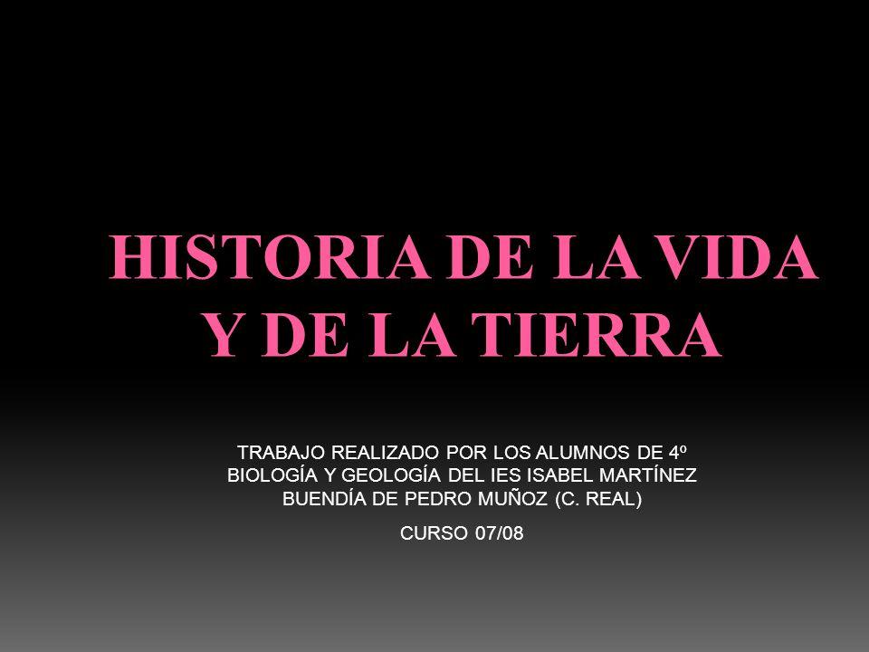 TRABAJO REALIZADO POR LOS ALUMNOS DE 4º BIOLOGÍA Y GEOLOGÍA DEL IES ISABEL MARTÍNEZ BUENDÍA DE PEDRO MUÑOZ (C. REAL) CURSO 07/08