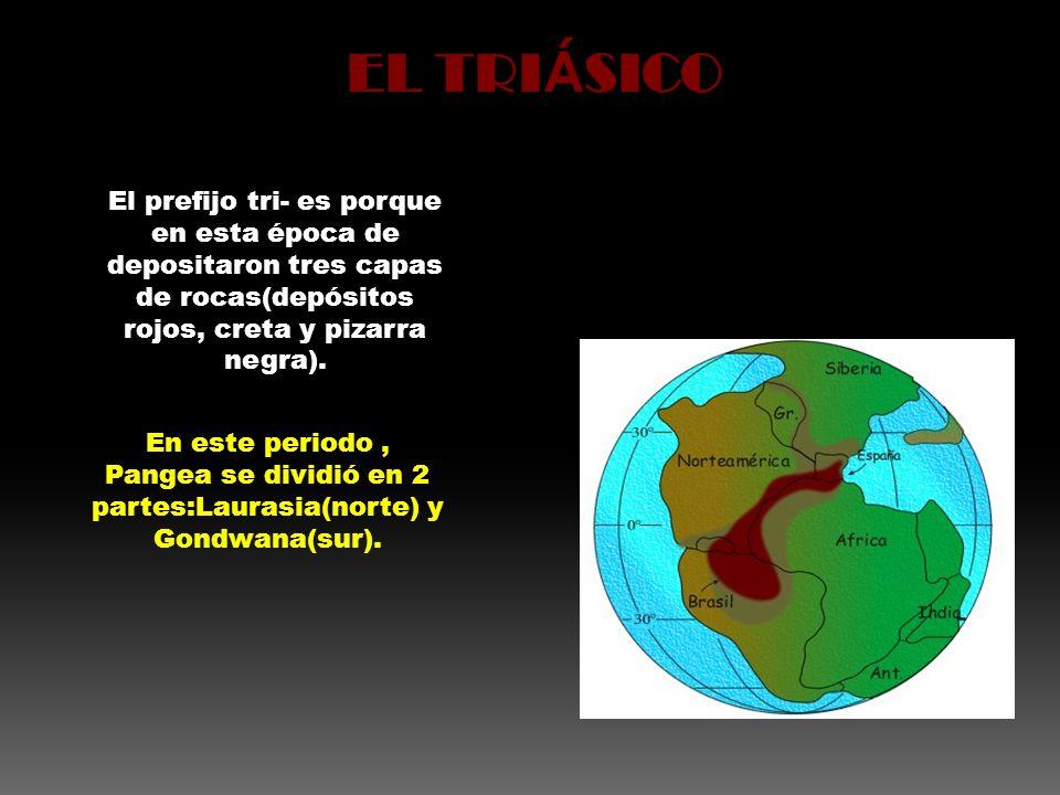 El prefijo tri- es porque en esta época de depositaron tres capas de rocas(depósitos rojos, creta y pizarra negra). En este periodo, Pangea se dividió