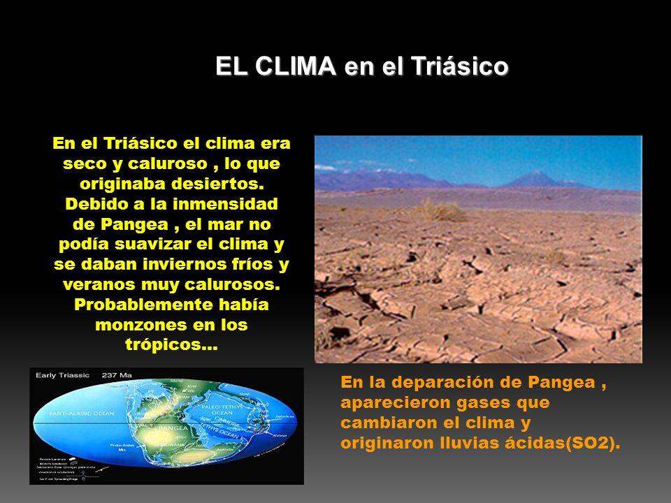 En el Triásico el clima era seco y caluroso, lo que originaba desiertos. Debido a la inmensidad de Pangea, el mar no podía suavizar el clima y se daba