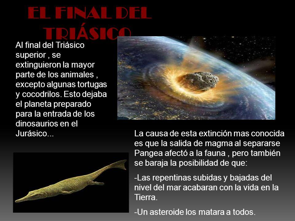 Al final del Triásico superior, se extinguieron la mayor parte de los animales, excepto algunas tortugas y cocodrilos. Esto dejaba el planeta preparad