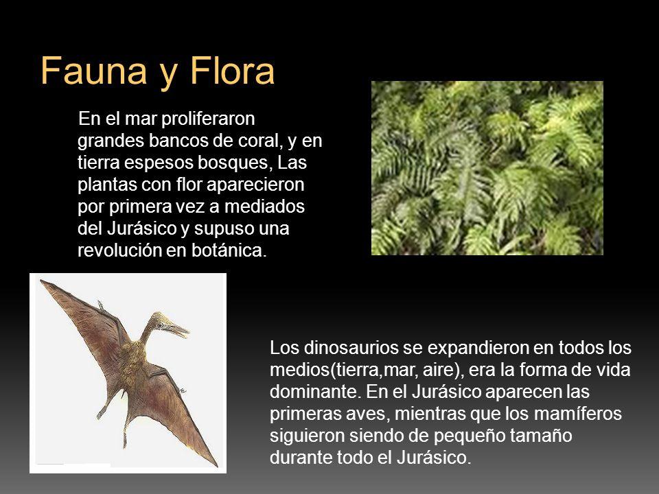 En el mar proliferaron grandes bancos de coral, y en tierra espesos bosques, Las plantas con flor aparecieron por primera vez a mediados del Jurásico