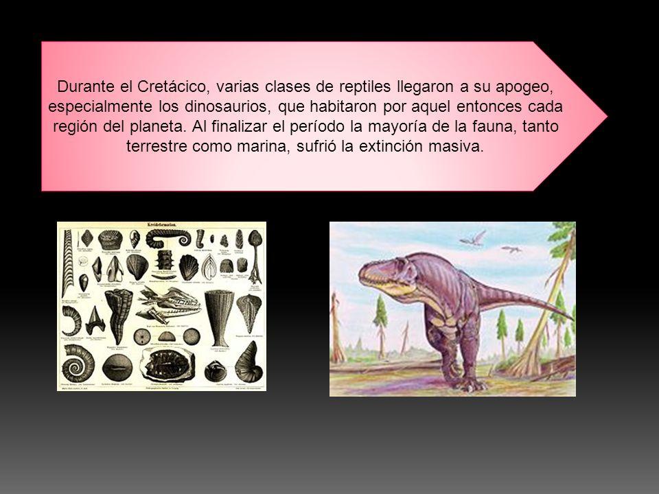 Durante el Cretácico, varias clases de reptiles llegaron a su apogeo, especialmente los dinosaurios, que habitaron por aquel entonces cada región del