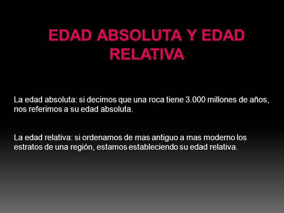 HOMO ERECTUS El Homo Erectus se representaba como un hombre pequeño, de 1,67m.