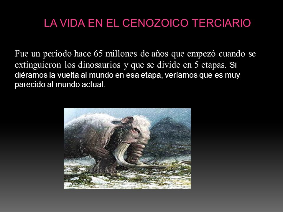 LA VIDA EN EL CENOZOICO TERCIARIO Fue un periodo hace 65 millones de años que empezó cuando se extinguieron los dinosaurios y que se divide en 5 etapa