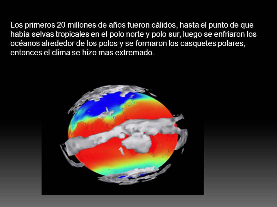 Los primeros 20 millones de años fueron cálidos, hasta el punto de que había selvas tropicales en el polo norte y polo sur, luego se enfriaron los océ