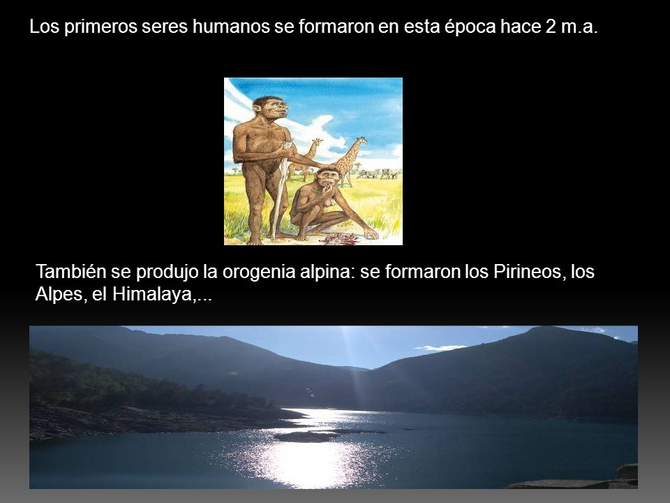 Los primeros seres humanos se formaron en esta época hace 2 m.a. También se produjo la orogenia alpina: se formaron los Pirineos, los Alpes, el Himala