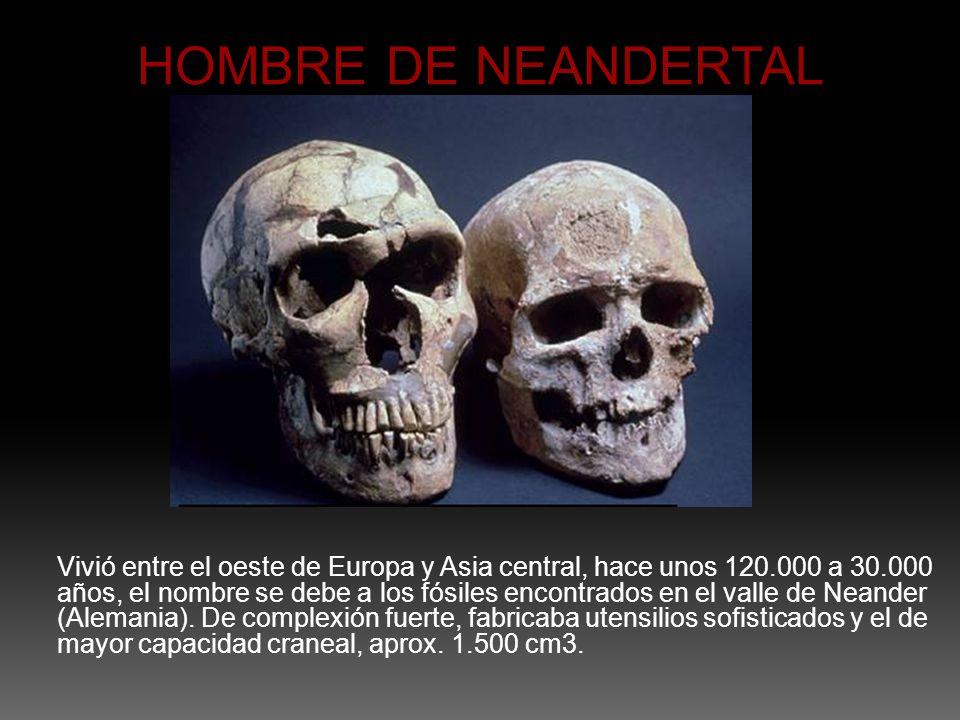 Vivió entre el oeste de Europa y Asia central, hace unos 120.000 a 30.000 años, el nombre se debe a los fósiles encontrados en el valle de Neander (Al