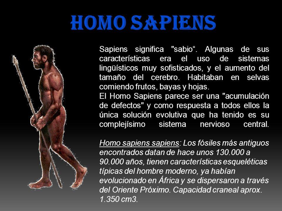 HOMO SAPIENS Sapiens significa