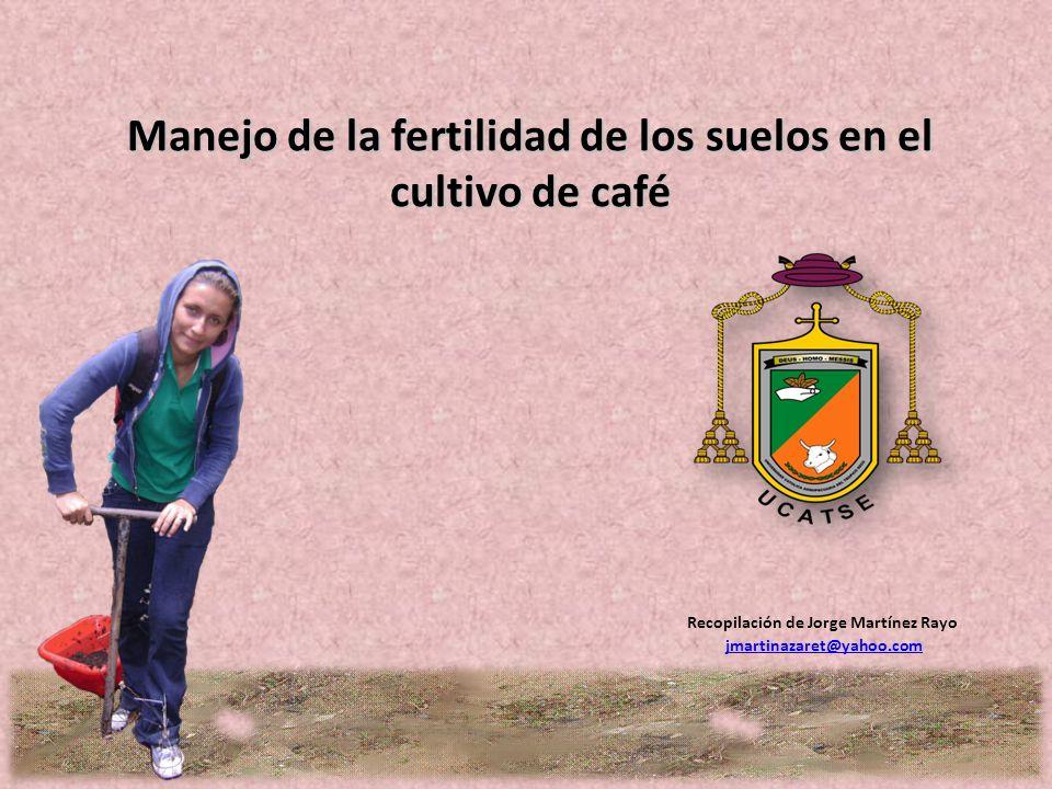 Manejo de la fertilidad de los suelos en el cultivo de café Recopilación de Jorge Martínez Rayo jmartinazaret@yahoo.com
