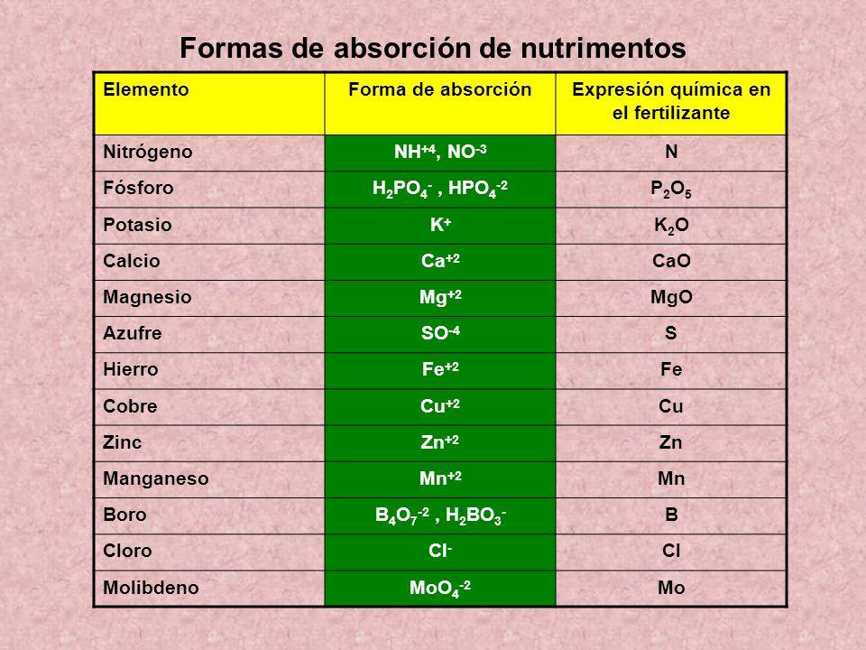 Formas de absorción de nutrimentos ElementoForma de absorciónExpresión química en el fertilizante NitrógenoNH +4, NO -3 N FósforoH 2 PO 4 -, HPO 4 -2