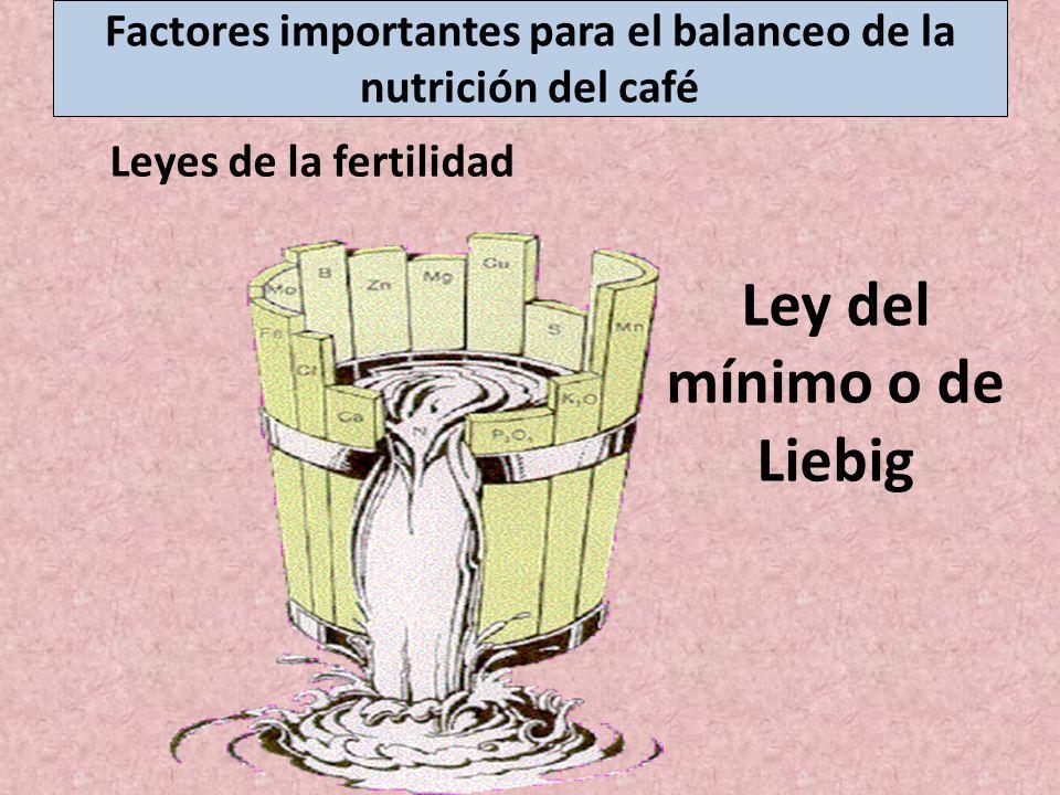 Ley del mínimo o de Liebig Leyes de la fertilidad Factores importantes para el balanceo de la nutrición del café