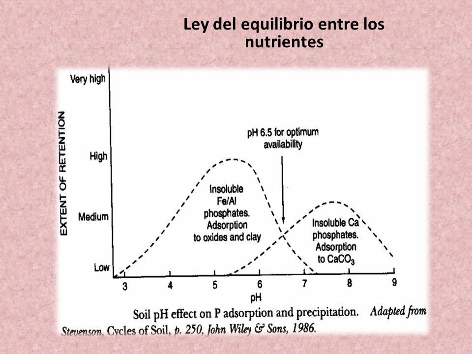 Ley del equilibrio entre los nutrientes