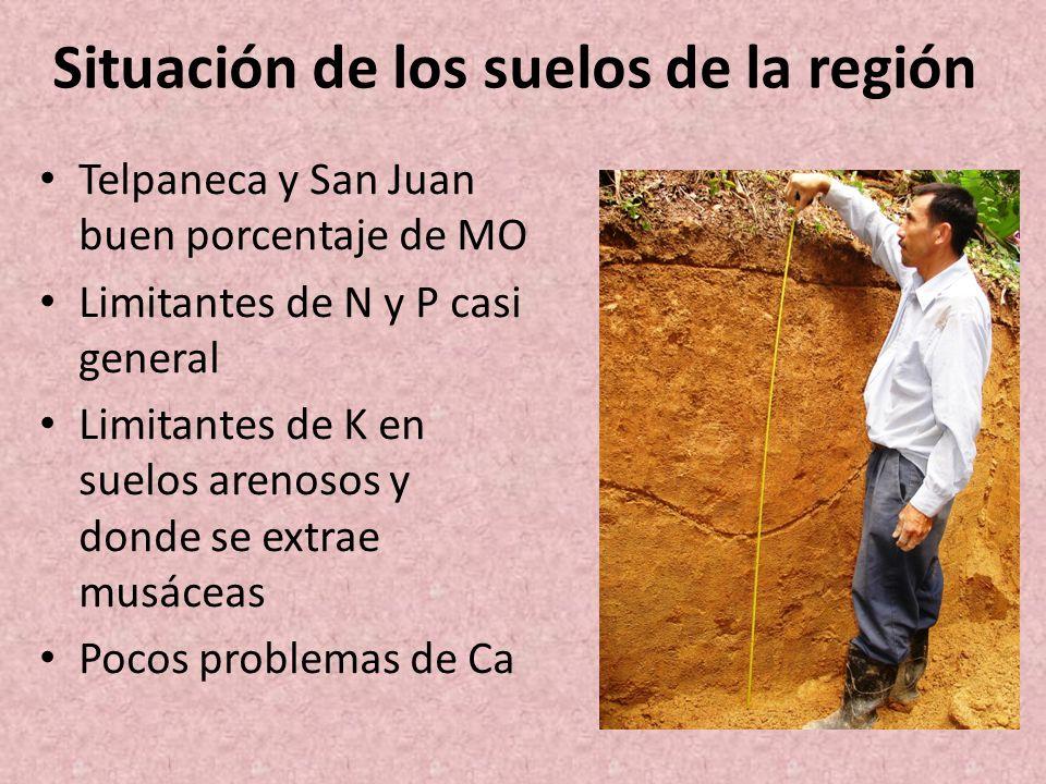 Situación de los suelos de la región Telpaneca y San Juan buen porcentaje de MO Limitantes de N y P casi general Limitantes de K en suelos arenosos y