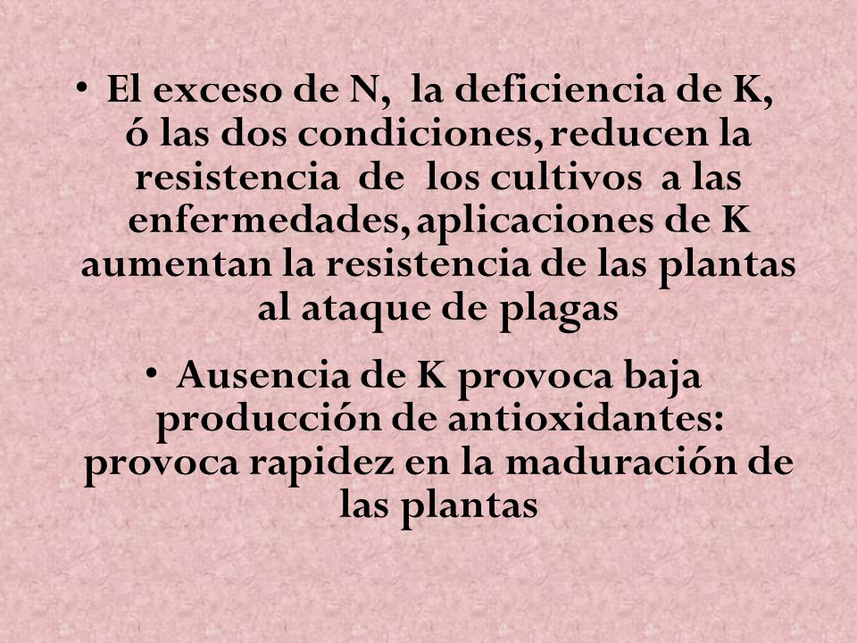 El exceso de N, la deficiencia de K, ó las dos condiciones, reducen la resistencia de los cultivos a las enfermedades, aplicaciones de K aumentan la r