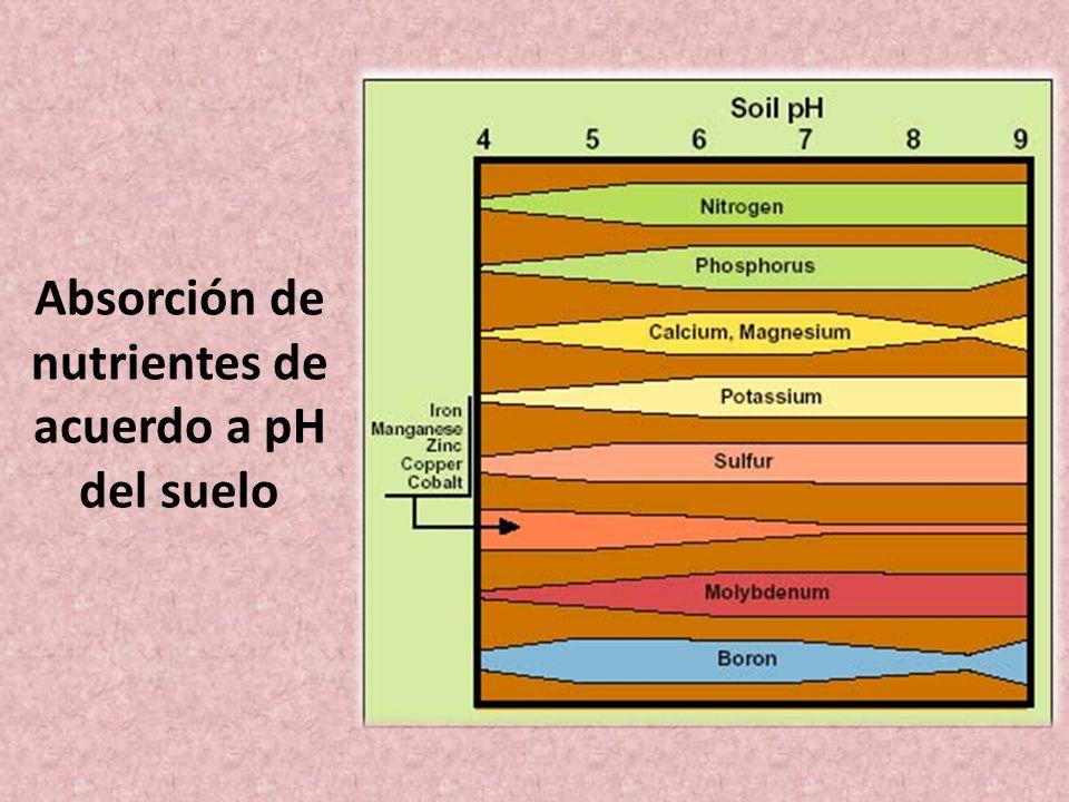 Absorción de nutrientes de acuerdo a pH del suelo