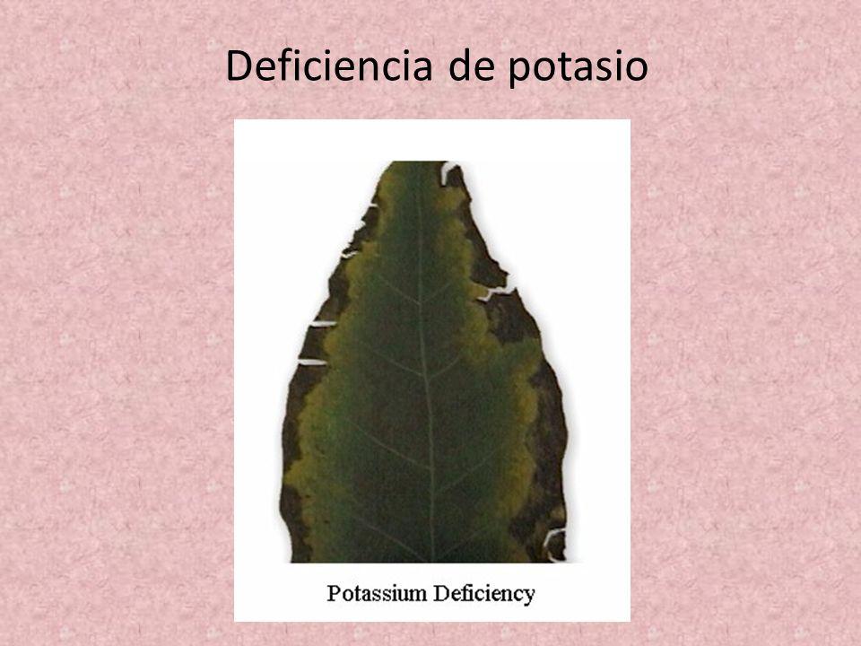 Deficiencia de potasio