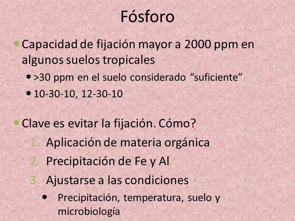Fósforo Capacidad de fijación mayor a 2000 ppm en algunos suelos tropicales >30 ppm en el suelo considerado suficiente 10-30-10, 12-30-10 Clave es evi