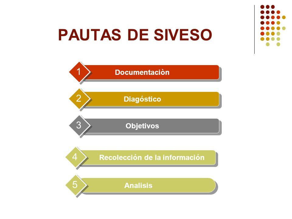 Documentaciòn 1 Diagóstico 2 Objetivos 3 Recolección de la información 4 PAUTAS DE SIVESO Analisis 5