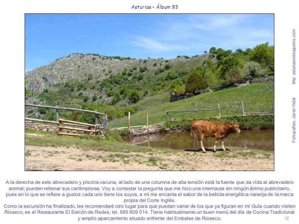 12 Asturias - Álbum 93 Fotografías: Javier Vidal http: asturiasenimagenes.com A la derecha de este abrevadero y piscina vacuna, al lado de una columna de alta tensión está la fuente que da vida al abrevadero animal; pueden rellenar sus cantimploras.